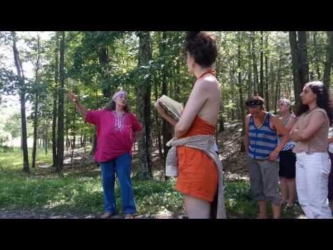 Chokecherry tree - in the forest with Susun Weed
