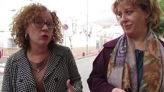 Ahora Murcia denuncia las podas drásticas del arbolado urbano