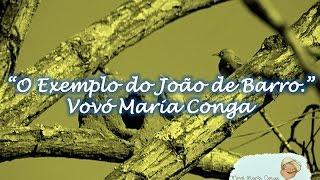 O Exemplo do João de Barro - Vovó Maria Conga