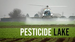 Pesticide Lake - The Poisoning of the Workers of Apopka, Florida