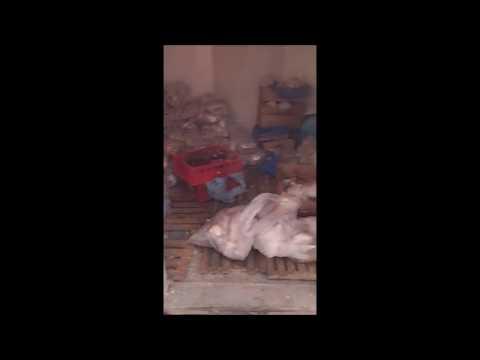 Satul de vacanţă Mamaia: Control al OPC Constanţa la Cuptorul cu plăcinte
