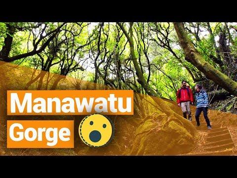 Te Apiti Wind Farm & Manawatu Gorge  - New Zealand's Biggest Gap Year – Backpacker Guide New Zealand
