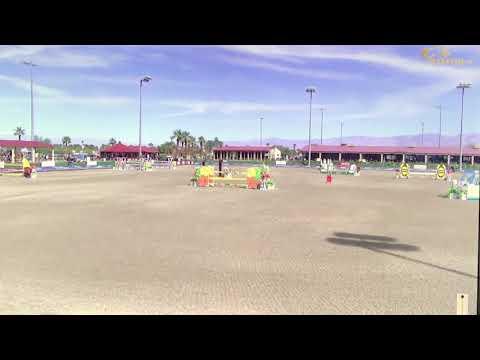 Cosmic Wins 1.40m Horseflight Jumper, Thermal