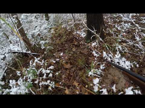 SHNF Hunting Doe Harvest Part 2