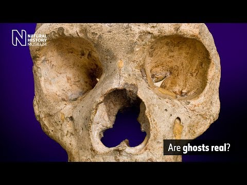 Are ghosts real? | Natural History Museum