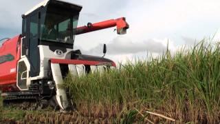 10.7.13 收成的喜悅  稻米收割機 施作流程  17.MTS