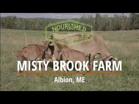 Faces of New England: Misty Brook Organic Farm