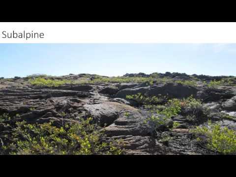 Geology 103 Hawaii Volcanoes National Park