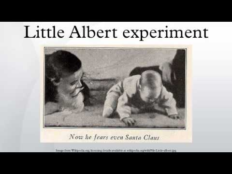 the use of classical conditioning to create a phobia in the little albert experiment The aim of the perverse experiment was to show that an emotionally stable nine-month-old infant - referred to as albert b - could be trained to have a phobia of something he wasn't.