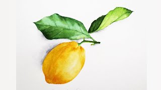 [베리현 수채화]  레몬 그리기   Watercolor…