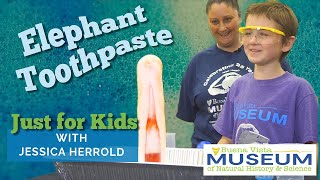Just For Kids STEM Activities: Elephant Toothpaste