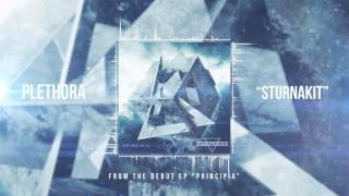 PLETHORA - Sturnakit Feat. Evan Dunn of ALAYA