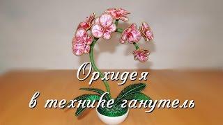 Орхидея в технике ганутель