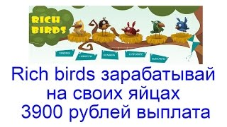 Rich birds зарабатывай на своих яйцах - 3900 рублей выплата