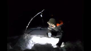 Ловля КРУПНЫХ ЯЗЕЙ на ПРИМИТИВНЫЕ СНАСТИ Зимняя Рыбалка 2021 на реке Ловля щук на жерлицы
