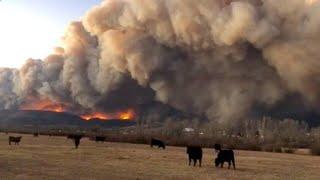 Schwere Waldbrände in Colorado kosten Menschen das Leben
