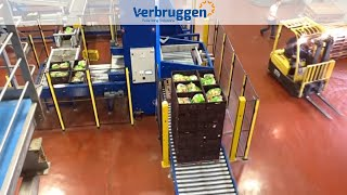 Palletizing | Automatic palletizer machine VPM-BL by Verbruggen | Box/Crate palletizer