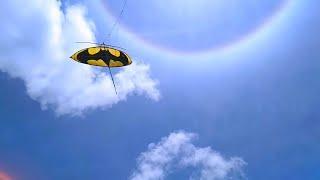 Download Experimen layangan sawangan sayap doang. Apa yg terjadi?