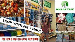 come with me to dollar tree haul