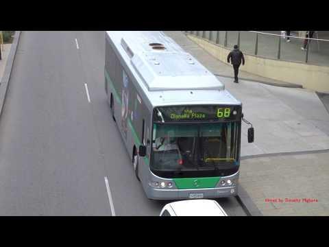 Buses In Perth, Australia 2017