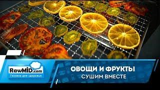 Сушим разные продукты одновременно в Сушилке овощей и фруктов rawmid dream vitamin DDV-10