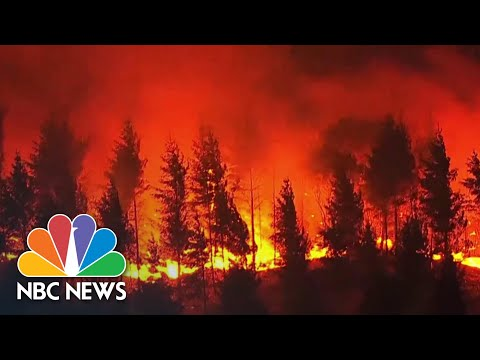 'Everything Is A Total Loss': Entire Towns Devastated By Oregon Wildfires | NBC News NOW