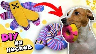 як зробити іграшкову собаку своїми руками