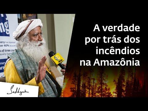 a-verdade-por-trás-dos-incêndios-na-amazônia-|-sadhguru-português
