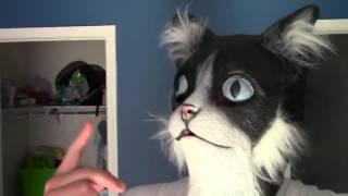 Хозяин в маске кошки пугает своих питомцев