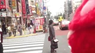 旅ぬこおもちゃくん 旅ぬこCatjukevox 旅ぬこ元神田ホイ(^ω^)
