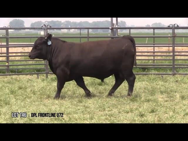 Dal Porto Livestock and Rancho Casino Lot 146
