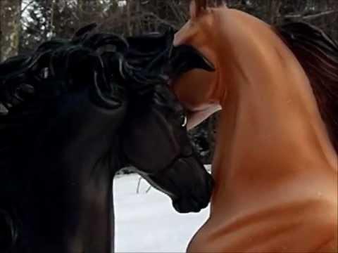 Breyer Horse - Every Storm [Runs Outta Rain] Music Video