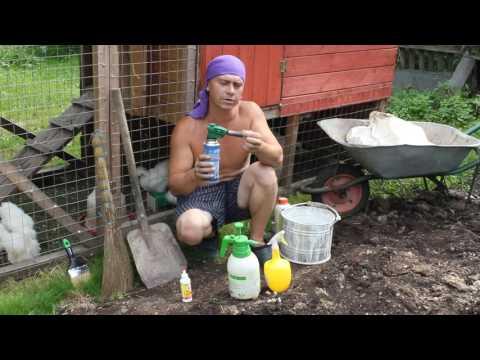 Стен. Борьба с куриными клещами (часть первая)