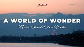 Narrow Skies & Simon Wester - A World of Wonder [meditation classical ambient]