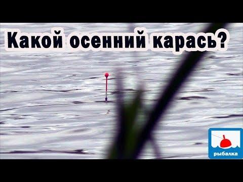 Особенности ловли карася поздней осенью - отчёт о рыбалке
