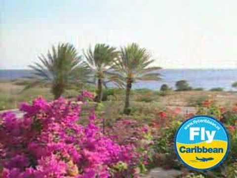 Hotel Livingstone Jan Thiel Resort Curacao