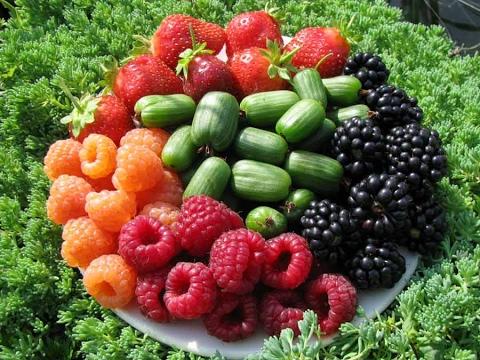 фото красивые ягоды