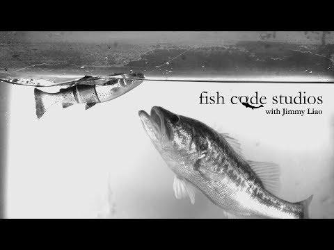 SWIMBAIT Science: Seeing Fish Footprints