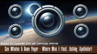 Слушать музыку  Sex Whales & Roee Yeger Where Was I feat Ashley Apollodor