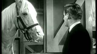 Mr Ed The Talking Horse Public Service Announcement