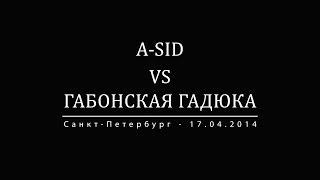 АНОНС VERSUS: A-Sid vs Габонская Гадюка (Санкт-Петербург - 17.04.14)