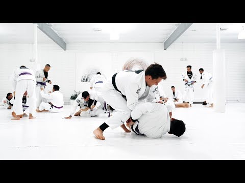 Rafael Mendes | Transitions & Submissions April 2019 | artofjiujitsu.com