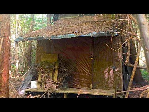 Лесник нашел загадочную хижину в лесу и зашёл внутрь