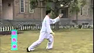 yang style 40 form tai chi competition routine