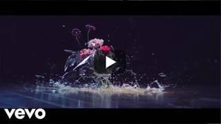 Zedd, Maren Morris, Grey - The Middle (Lyric Video) - YouTube (Cover) by SHALEA