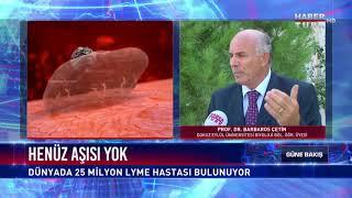 Taklitçi ve Sessiz Katil: Lyme Virüsüne Dikkat!
