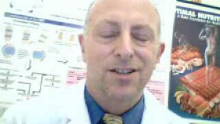 dr noa s natural medicine update coq10 and congestive heart failure