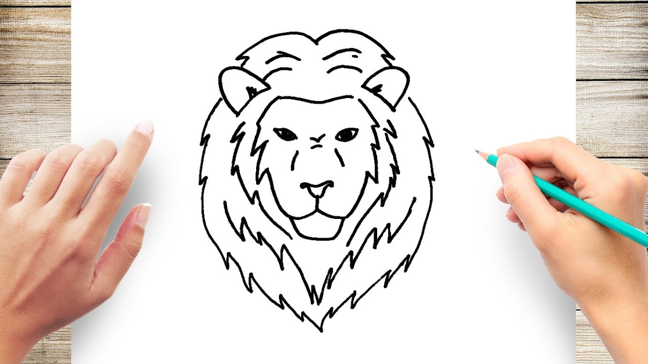 How To Draw A Lion Face Step By Step For Kids Youtube