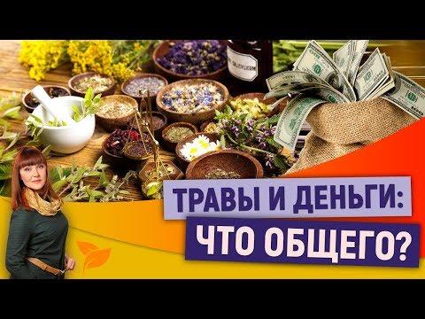 0 Травы и деньги: Что общего?