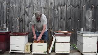 2021 Package Bee Installations